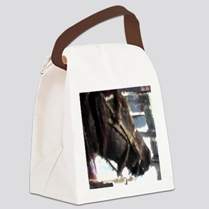 horse23 Canvas Lunch Bag