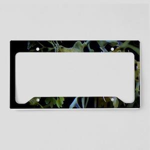 Leafycloseup1 License Plate Holder