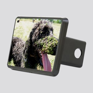 Harry Lucy Rectangular Hitch Cover
