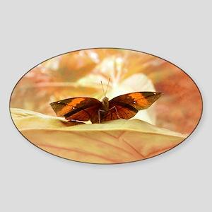 portable_papillon_lore_m_art Sticker (Oval)