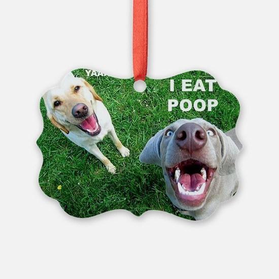 Dogspoop Ornament