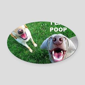 Dogspoop Oval Car Magnet