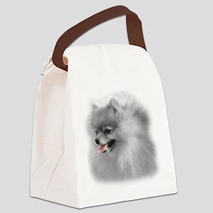glass_pom1 Canvas Lunch Bag