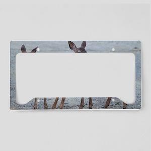 fawnslaptopskin License Plate Holder