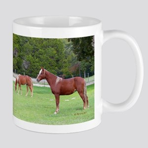 Tennessee Walkers Horse Mugs