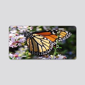 Monarch Butterfly Aluminum License Plate