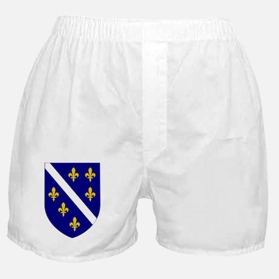 7x7-Roundel_of_Bosnia_and_Herzegovina Boxer Shorts