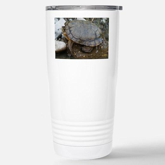 pondturtlelaptopskin Stainless Steel Travel Mug