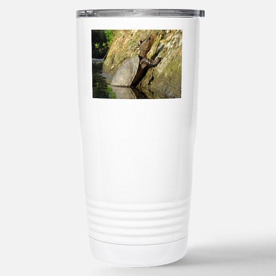 turtlelaptopskins Stainless Steel Travel Mug