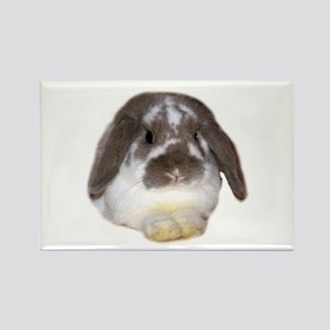 """""""Bunny 1"""" Rectangle Magnet"""