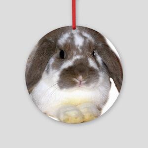 """Bunny 1"" Ornament (Round)"