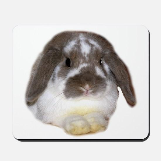 """Bunny 1"" Mousepad"