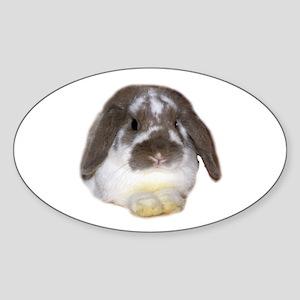 """""""Bunny 1"""" Oval Sticker"""