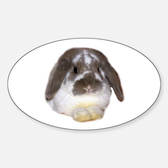 """Bunny 1"" Oval Decal"