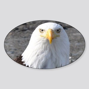 Bald Eagle Provider of Strength Sticker (Oval)