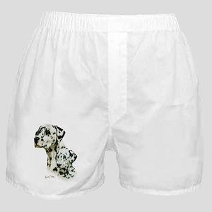 Dalmatian  Pup Boxer Shorts