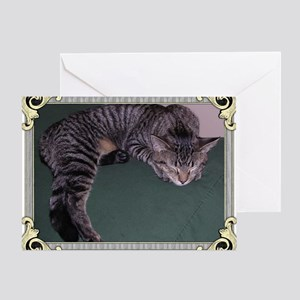 Napping Cat-Scroll-M Greeting Card