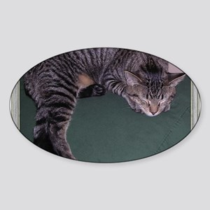 Napping Cat-Scroll-M Sticker (Oval)