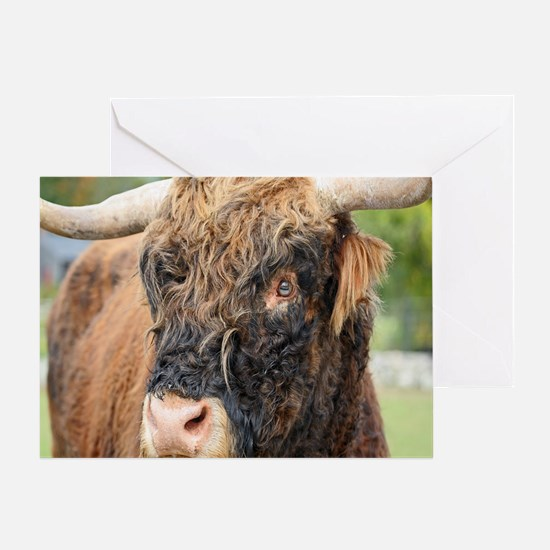 Yakity Yak Greeting Card