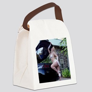 DSC00072howardnesa Canvas Lunch Bag