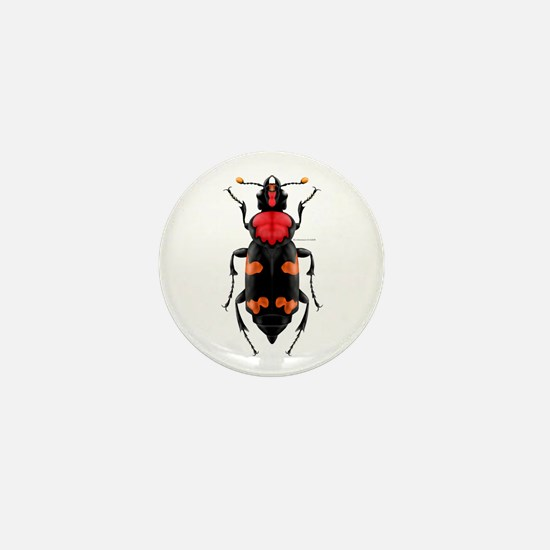 Amer. Burying Beetle Mini Button