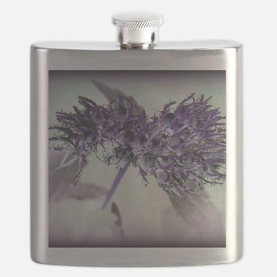 Purple Passion Flask