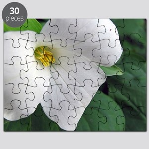 Ontario Trillium Puzzle