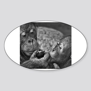 orangutans-sharing-an-apple Sticker