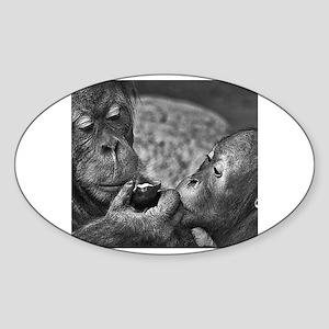 orangutans-sharing-an-apple Sticker