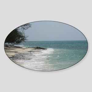 Bahamas7_0001 Sticker (Oval)