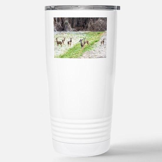 DeerInFrost_laptop Stainless Steel Travel Mug