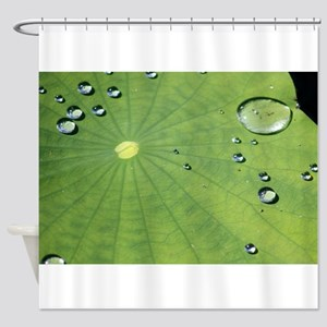 Dew on a Lilypad Shower Curtain