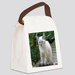 Blue eyed kitten Canvas Lunch Bag