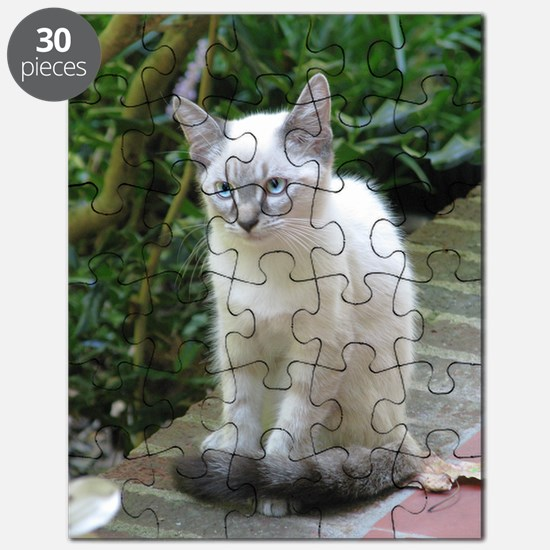 Blue eyed kitten Puzzle