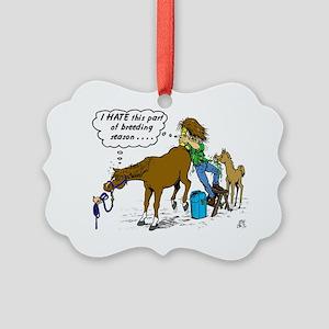 Horse Vet-dark Picture Ornament