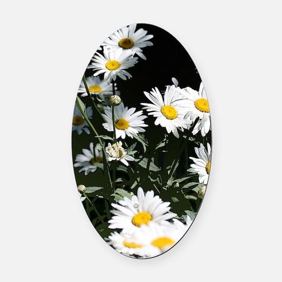 daisy Oval Car Magnet