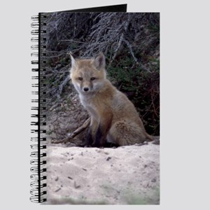 Red Fox Kit Journal