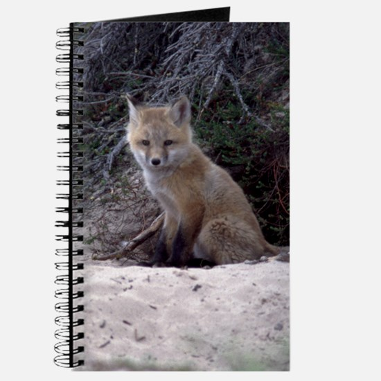 Red Fox Kit Journal