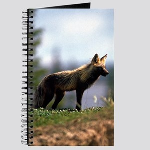 Cross Fox Journal