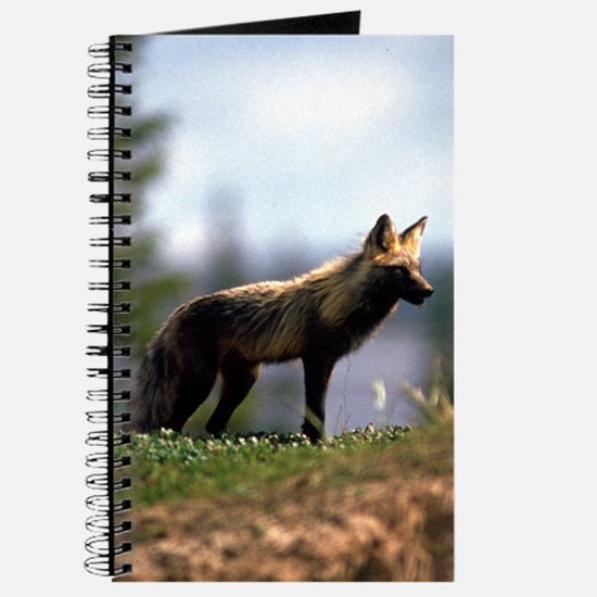 Cross Fox Journal