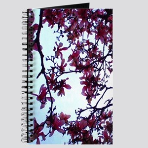 cherry Journal