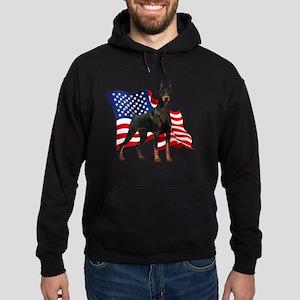 flag2 Hoodie (dark)