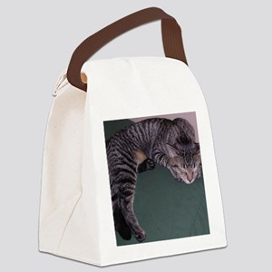 Napping Cat-WR Canvas Lunch Bag