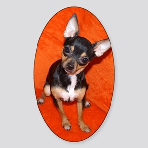 ChihuahuaJournal Sticker (Oval)