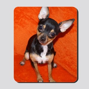 ChihuahuaJournal Mousepad