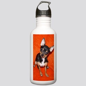 ChihuahuaJournal Stainless Water Bottle 1.0L