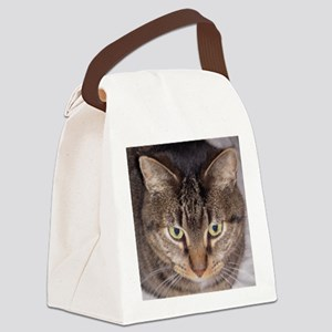 Snuggle-AW Canvas Lunch Bag