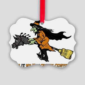 Halloween Witch Costume Picture Ornament