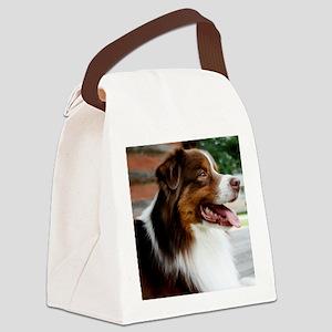 calendarredporch Canvas Lunch Bag