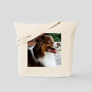 calendarredporch Tote Bag